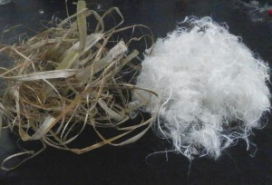 Canfiber Hemp Ribbons Image